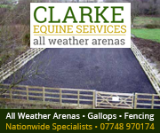 Clarke Equine Services 2019 (Gloucestershire Horse)