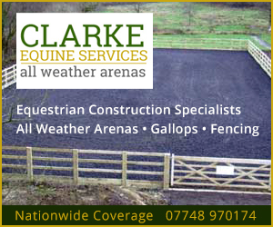 Clarke Equine Services 2020 (Gloucestershire Horse)
