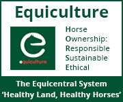 Equiculture 01 (Gloucestershire Horse)