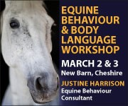 Justine Harrison Workshop March 2019 (Gloucestershire Horse)