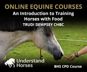 UH - An Introduction To Training Horses With Food (Gloucestershire Horse)