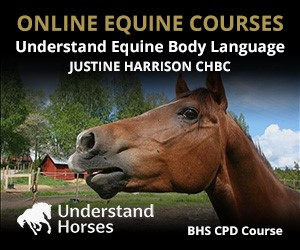 UH - Understand Equine Body Language (Gloucestershire Horse)