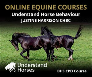UH - Understand Horse Behaviour (Gloucestershire Horse)